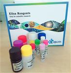 人肝脂肪酸结合蛋白(LFABP)elisa试剂盒说明书