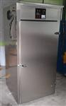 双开门臭氧消毒柜-医用臭氧消毒柜