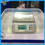带防水功能的电子秤,3kg/0.5g不锈钢防水秤