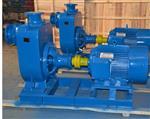 80ZW50-60自吸排污泵