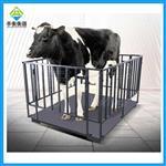称牛用1吨畜牧电子秤,1.2*1.5米围栏电子秤