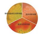显色培养基单增李斯特菌快速鉴别琼脂