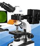 三目落透射显微镜