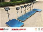 100KG计数型电子秤 厂家直发 上海100公斤电子秤