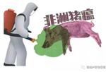 非洲猪瘟病毒专用试剂盒报价;非洲猪瘟病毒检测专用仪器;肉制品加工检测猪瘟病毒仪器方案;南平三明宁德福州检测猪瘟病毒厂家