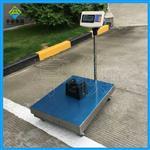 100kg移动式电子台秤