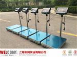 上海 上海松江区TCS-500kg电子秤,500公斤电子台秤