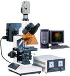 数码荧光显微镜