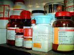 铜锌超氧化物歧化酶(CuZn-SOD)J检测服务,铜锌超氧化物歧化酶(CuZn-SOD)试剂盒