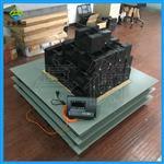 SCS-3T电子地磅|3吨地磅秤