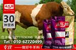 育肥肉牛的预混料牛的预混料什么品牌的牛预混料更好