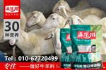肉羊养殖场专用预混料