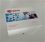 MEXN-H3065人成纤维细胞生长因子2(FGF-2)elisa试剂盒