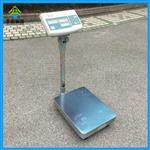 60kg计数台秤,60公斤电子秤