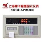 现货批发上海耀华AK3190-A9+P地磅称重仪表