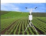 农田环境气象监测站,雨量温湿度观测仪
