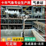 环境检测仪-DC-QX东成基业-气象站厂家推荐