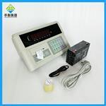 仪表自带打印的显示器,耀华XK3190-A9+P仪表价格