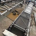 南京兰江GSHP循环式齿耙清污机