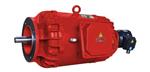 DS..FZO希而科优势品牌 Winkelmann  电机 DS系列