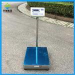 XY100F(100kg/1g)高精度电子秤