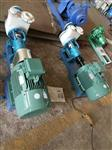 氟塑料自吸泵,FZB耐腐蚀化工自吸泵