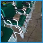 西安轮椅秤生产厂家,300公斤移动式座椅称