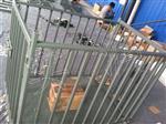 称活猪电子秤(猪笼秤)唐山带围栏称牲畜电子秤