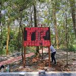 连平县森林公园负氧离子监测系统 LED单色屏显示负氧离子监测系统