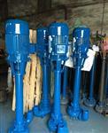 NL污水泥浆泵,立式不锈钢泥浆泵,无堵塞污水泥浆泵