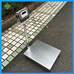 防水台秤,100公斤不锈钢台秤精度