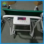 椅式轮椅秤,医疗透析秤