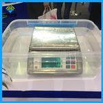 能放水里泡的电子秤,6公斤防水秤价格