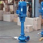 NL65-16泥浆泵,污水泥浆泵