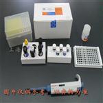 鸡分泌型免疫球蛋白A(sIgA)酶联免疫吸附测定试剂盒