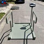 SCS-300kg轮椅秤,可拆卸医疗透析秤