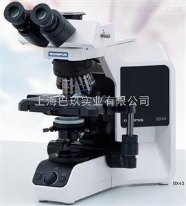 N-300M双(三)目生物显微镜