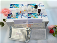 兔血浆?#37327;?#31890;膜蛋白(GMP-140)ELISA试剂盒原理