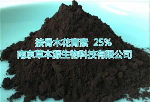 现货供应 接骨木提取物 接骨木花青素 25%、CBY000126、CBY000128、CBY000127