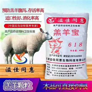羔羊喂什么?#35889;?#32660;羊颗粒
