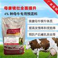 母牛下奶料,哪个厂?#19994;?#27597;牛饲料好,利斯特母牛饲料母牛宝。