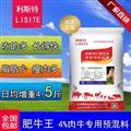 育肥牛上膘预混料肉牛饲料生产厂家