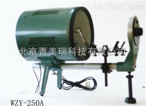 WZY-250玻璃制品应力仪