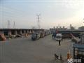 广州到陆丰物流公司-直达运输 每天发车