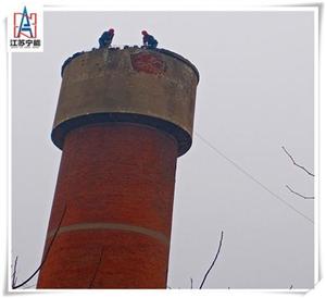 高青县烟囱安装爬梯平台公司